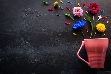 flowers, petals and herbs from a pink mug on a black background with space for text 写真素材
