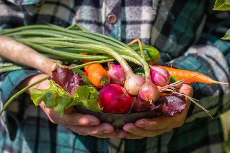 farmer holding a fresh crop of home vegetables Foto de archivo - 131825658