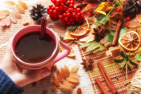 woman holds a mug of hot tea with cinnamon on a background of autumn leaves and a woolen plaid. hello autumn concept