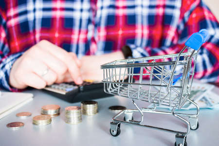 girl with a smartphone, a credit card and a grocery cart. online shopping Zdjęcie Seryjne