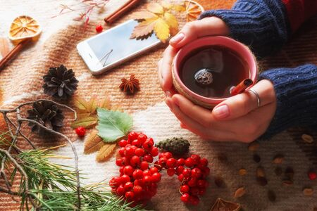 woman holds a cup of hot tea on an autumn background. yellow leaves, mountain ash on a woolen plaid. hello autumn concept
