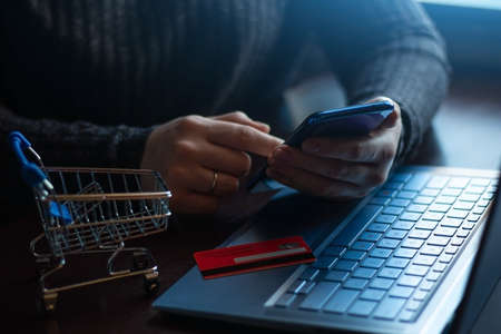 girl with a smartphone and laptop orders in the online store. online shopping Zdjęcie Seryjne