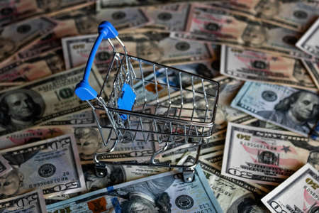 empty grocery cart on the background of dollar bills, crisis concept, inflation Zdjęcie Seryjne - 152330760