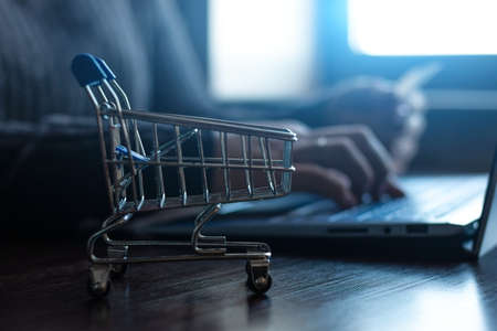 close-up grocery cart on the background of a girl with a laptop and a bank card; concept of online shopping, payment of bills, taxes
