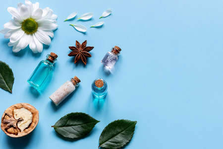 samples of oils, perfumes, creams, cosmetics, flowers and walnuts natural ingredients of natural cosmetics with place for text