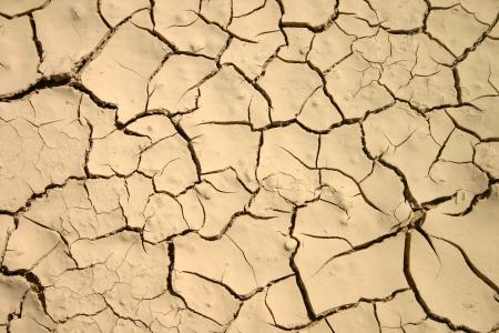 Dried mud