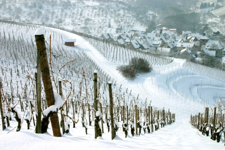 Winter view of snow covered vineyards with german village in the distance  Stock Photo