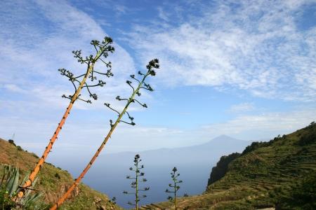 View of Tenerifa from La Gomera
