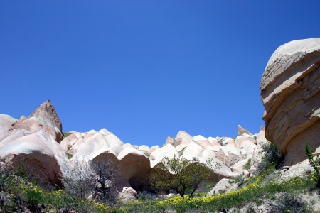 Rose valley, Cappadocia, Turkey photo