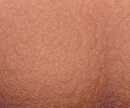 la piel humana