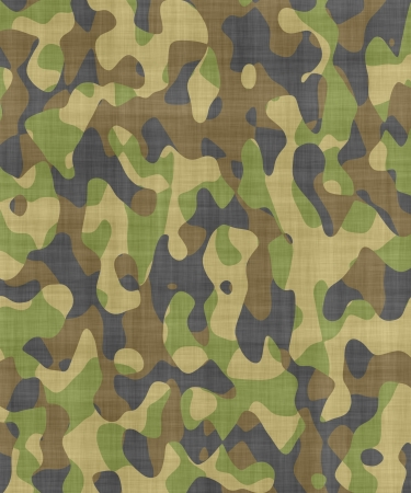 camouflage background