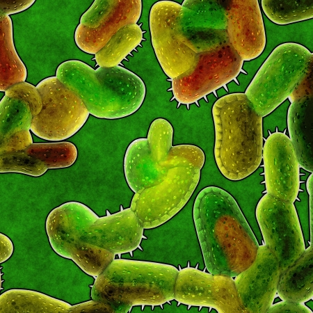 bacteria background photo