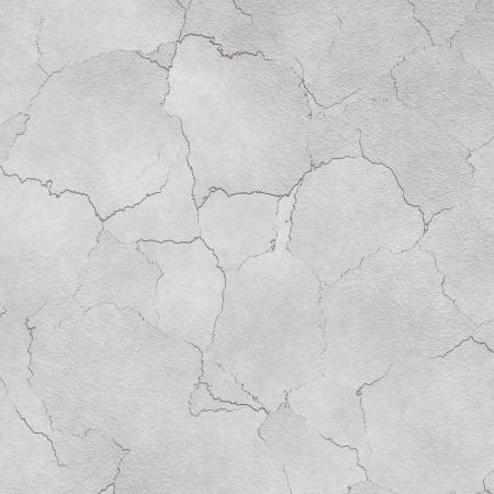 white wall photo