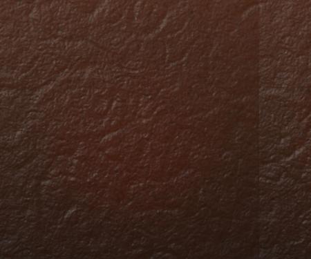 piel negro