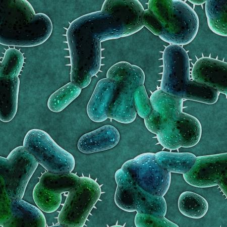 bacterial meningitis: bacteria cells
