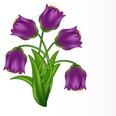 illustration of lilac bells. Gradient meshes. Illustration