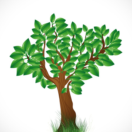 Natural background with green tree and grass.