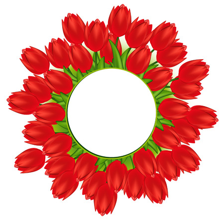 red tulips. Gradient meshes.  Vector