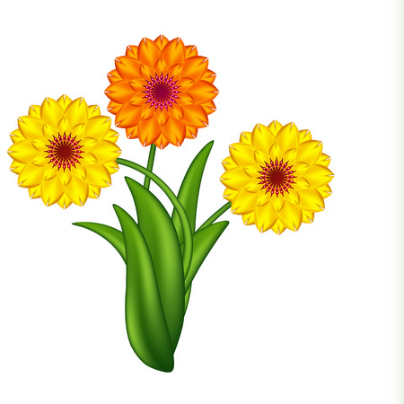 Vector illustration of sunny flowers. Gradient meshes. Stock Vector - 8977239
