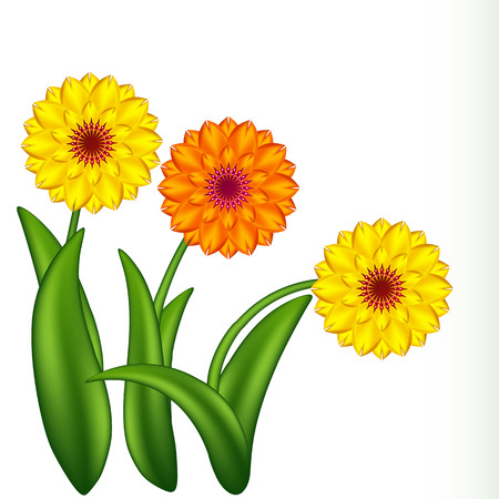 Vectorillustratie van zonnige bloemen. Verloopnetten.