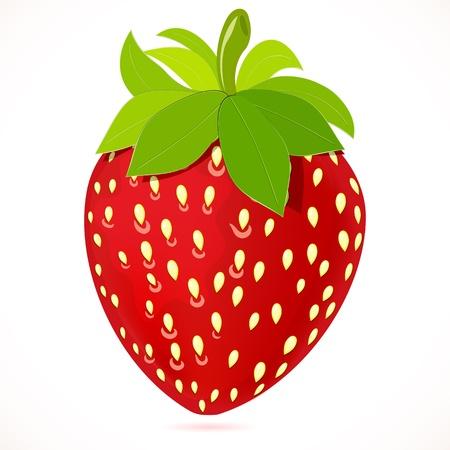 fruit stem: strawberry.