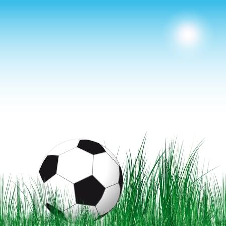 Soccer Ball Stock Vector - 13392328