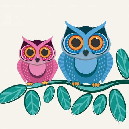 owl on branch: Couple owls birds on a tree branch