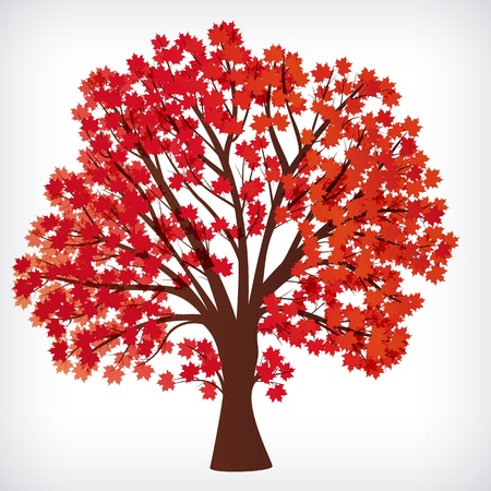 abstract background, maple tree with branches made of autumn leaves. Vector