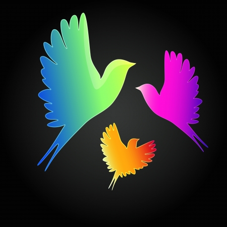 black background with a flying birds.  Vector