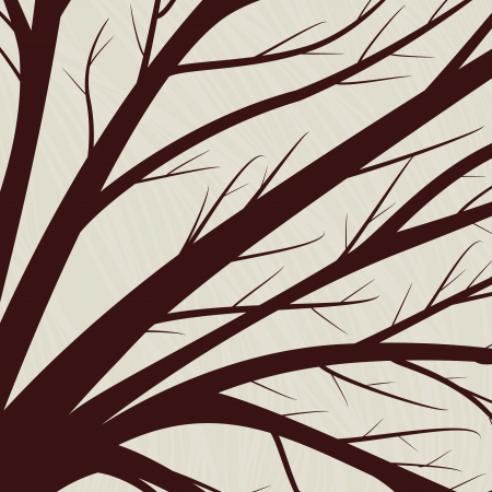 abstract backgrounds with natural elements