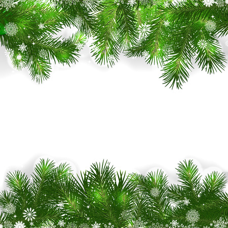 Christmas background with green branches of Christmas tree. Vector