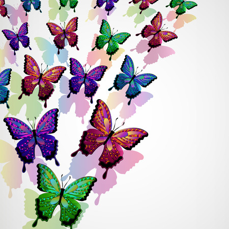 Butterflies design background  Vector