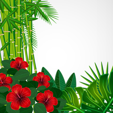 Tropical floral design background  Vector