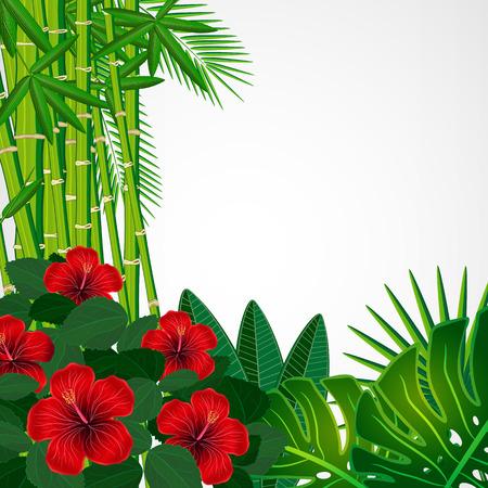 Tropische bloemenontwerpachtergrond Stock Illustratie