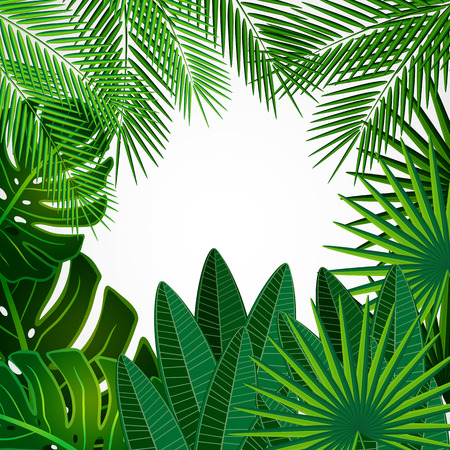 Tropical leaves. Floral design background. Vector