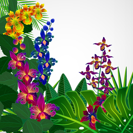 blue orchid: Tropical flowers and leaves. Floral design background. Illustration