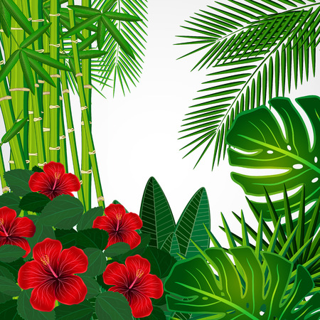 bamboo border: Tropical floral design background.