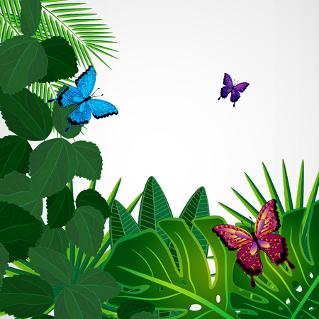 monstera leaf: Tropical leaves with butterflies. Floral design background. Illustration