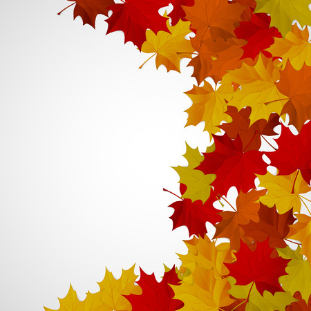 Abstract background with autumn colorful leaves. Vector