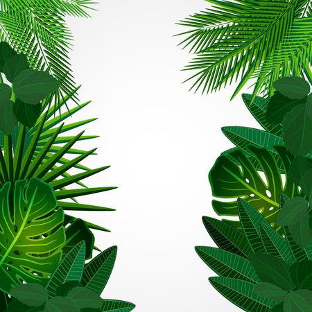 tropisch: Tropische Blätter. Floral Design-Hintergrund. Illustration