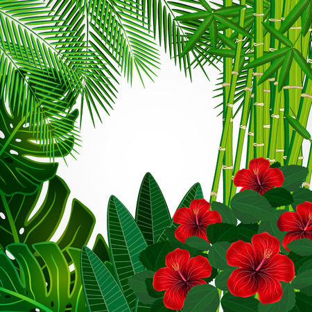lush foliage: Tropical floral design background.