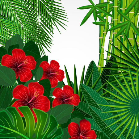 Tropical floral design background. Vector