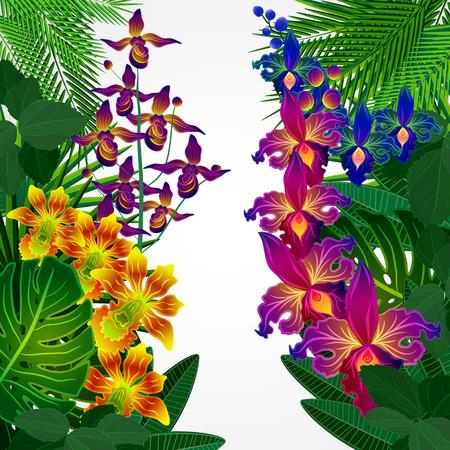 orchidee: Fiori tropicali e foglie. Disegno di sfondo floreale.