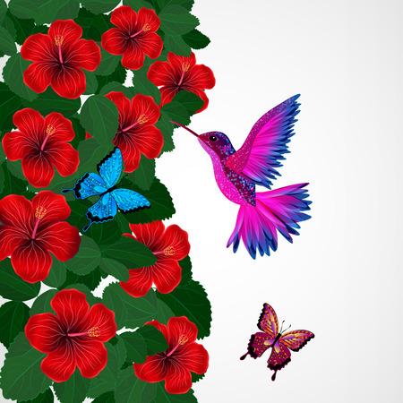 Floral design background. Hibiscus flowers with bird, butterflies. Vector