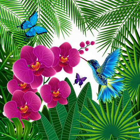Floral design background. Orchid flowers with bird, butterflies. Vector