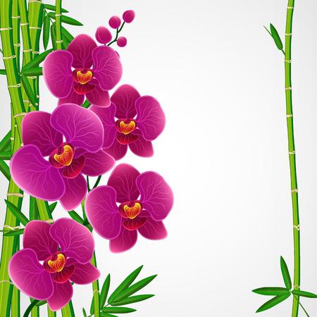 Fondo de diseño floral. Bambú y orquídeas. Ilustración de vector