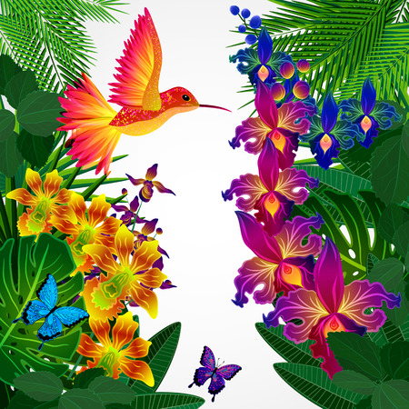 tropical garden: Floral design background. Tropical orchid flowers, birds and butterflies.