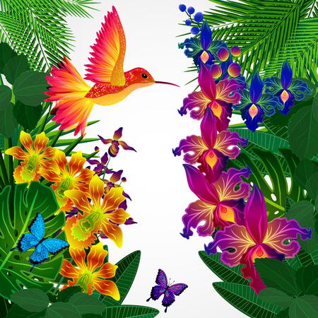 Floral Design-Hintergrund. Tropical Orchideen Blumen, Vögeln und Schmetterlingen.
