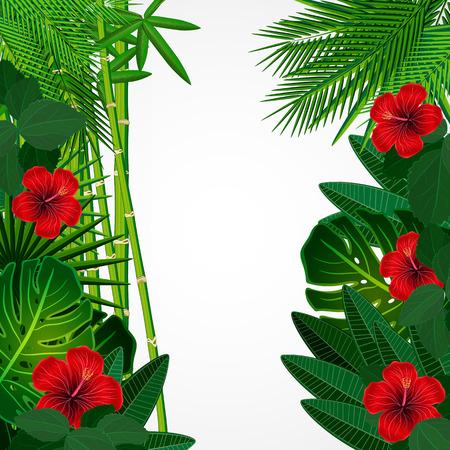 leaves border: Tropical floral design background.