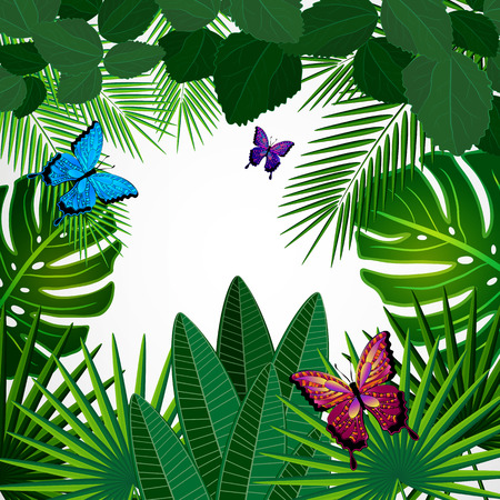 tropical forest: Tropical leaves with butterflies. Floral design background. Illustration